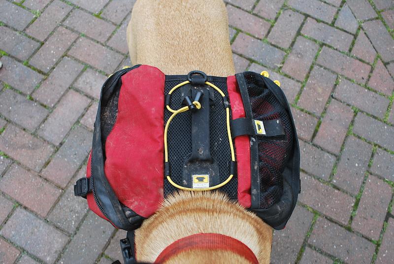 шьем сами спортивную сумку